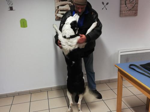 Sans abris animaux - Dispensaire Vétérinaire Etudiant