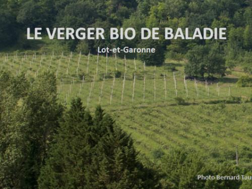 LE VERGER BIO DE BALADIE