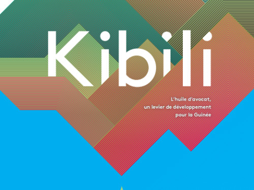 Participation au projet Kibili