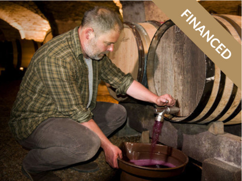 CREATING A BIODYNAMIC WINE PRODUCING COMPANY