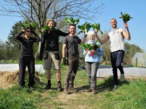 Plantation de vergers permaculturels - La belle et la blette