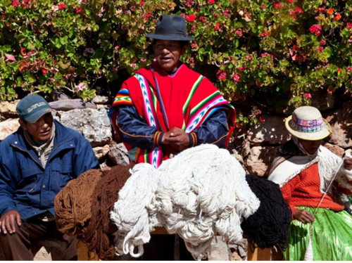 Mission d'étude de la laine et des élevages de l'Altiplano