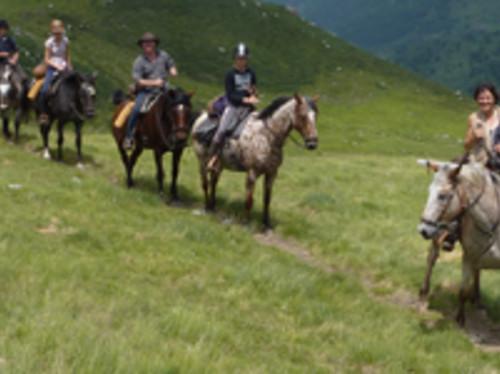Lutter contre la deprise agricole dans les pyrenées