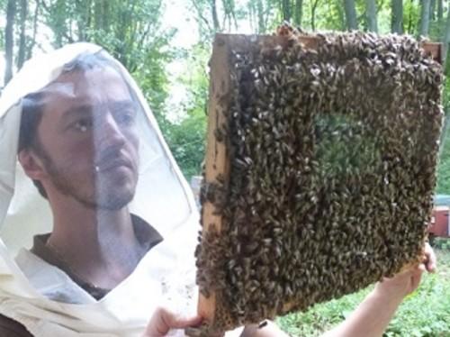 Un verger pour Cit'abeille