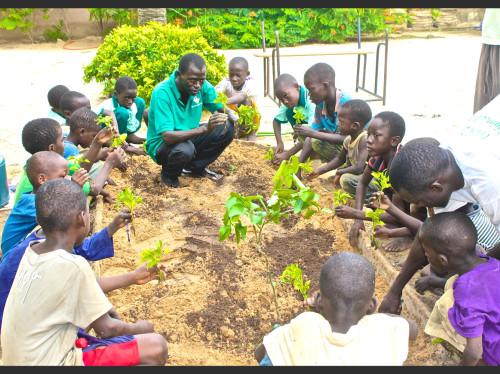 3 Puits & 3 Vergers pour le bien-être des enfants
