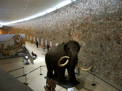 Un film sur la préhistoire pour le musée de Quinson