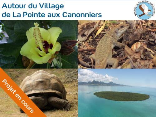 Conservation de la biodiversité endémique de l'île Maurice