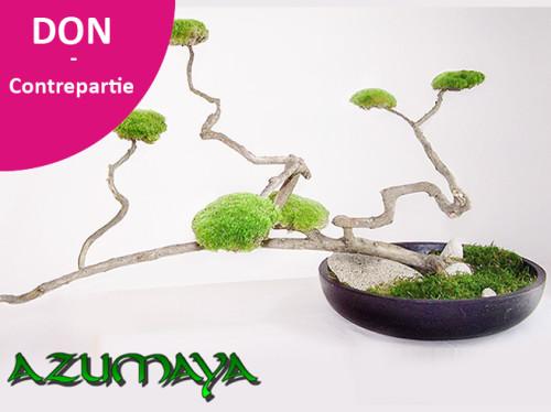 Azumaya