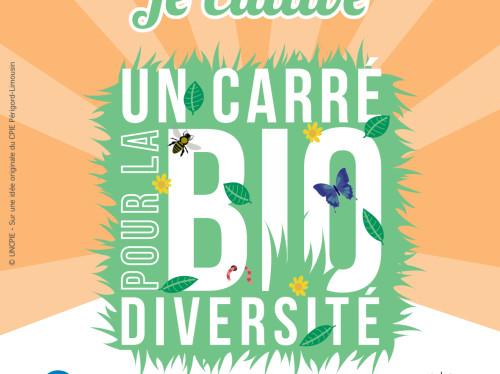 Environnement - Un carré pour la biodiversité