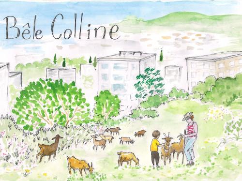 Bêle Colline, l'éco-pâturage : écologique et participatif