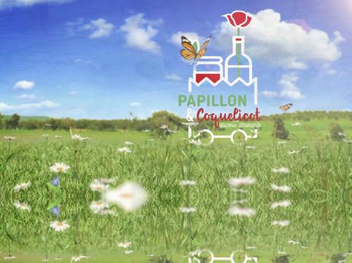 PAPILLON ET COQUELICOT
