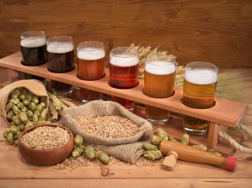 Brasserie La Louette, bières bio artisanales et locales