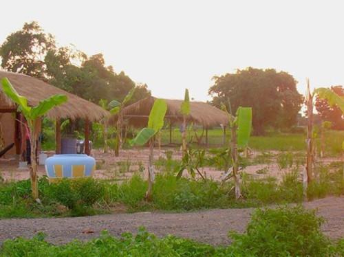 La permaculture au Cambodge par les compagnons de Caluire