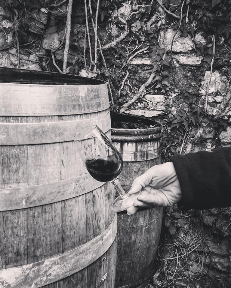 Vin Agriculture Biologique