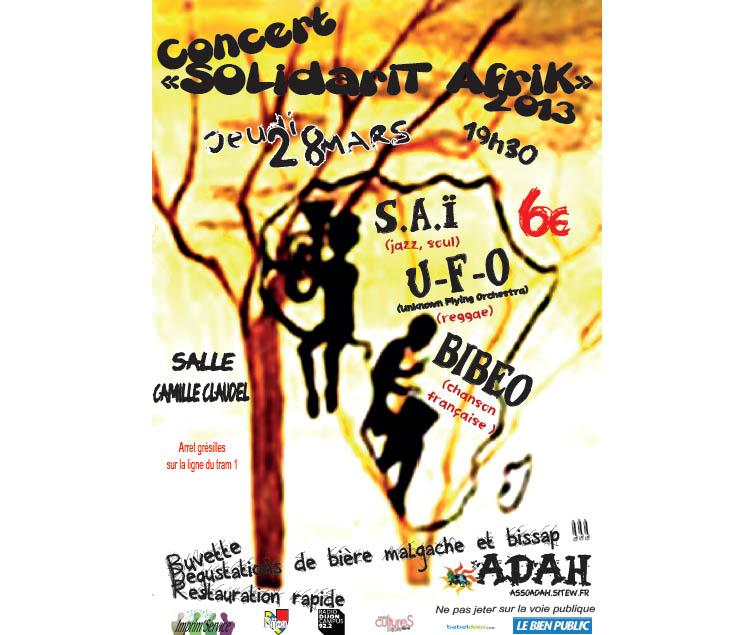 Concert SolidariTAfriK - Dijon 2013
