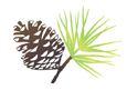 image_thumb_Recycler les déchets vert avec le financement d'un broyeur