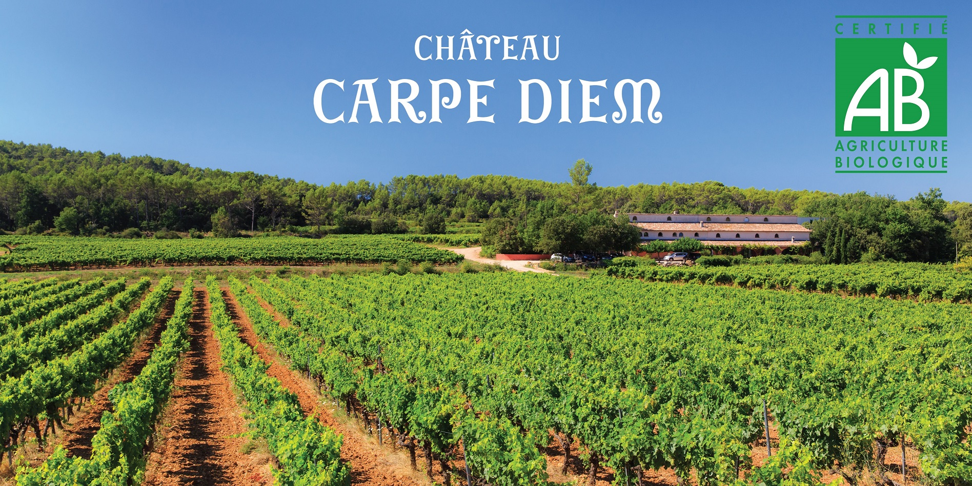 Château Carpe Diem (prêt)