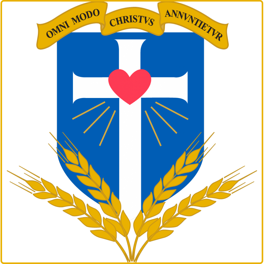 Avenir et promotion de la Jeunesse - Saint Vincent de Paul