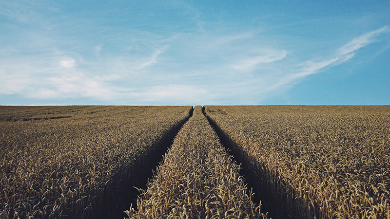 L'agriculture entame sa transformation numérique