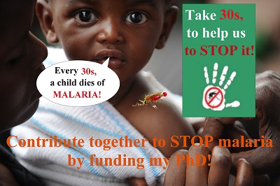 Contribuons à stopper le paludisme en finançant mon doctorat / Contribute together to stop malaria by funding my PhD