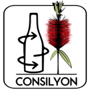 image_thumb_CONSILYON 2020