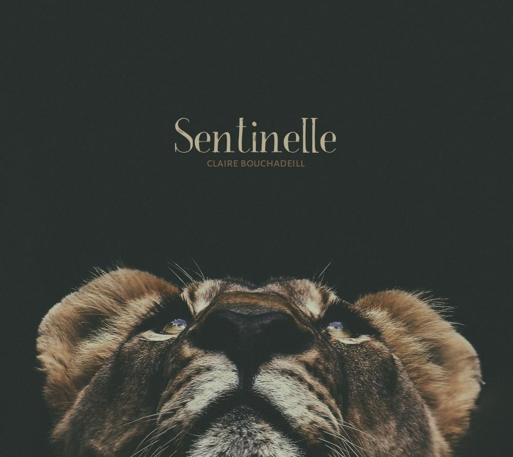 image_thumb_Sentinelle ! Le projet musical de Claire Bouchadeill