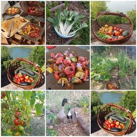 Un jardin pour tous, un jardin pour demain
