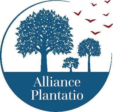 image_thumb_Institut Alliance Plantatio : au service du renouveau de l'enseignement catholique et de la création d'écoles paroissiales
