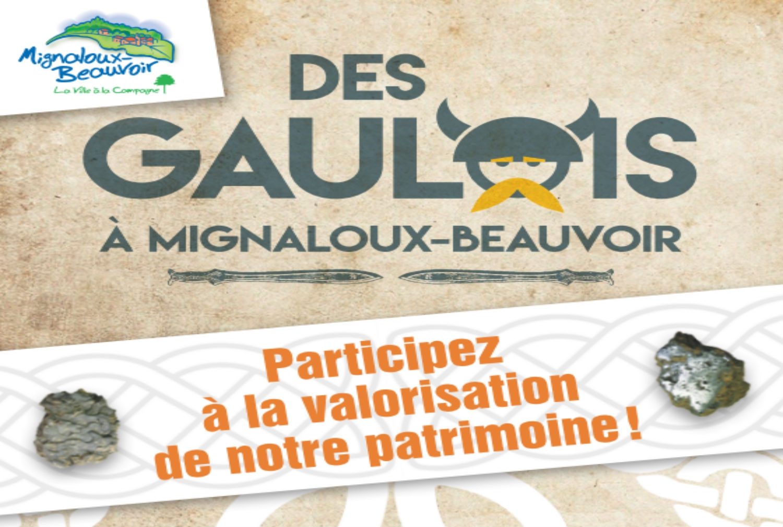 image_thumb_Des Gaulois à Mignaloux-Beauvoir