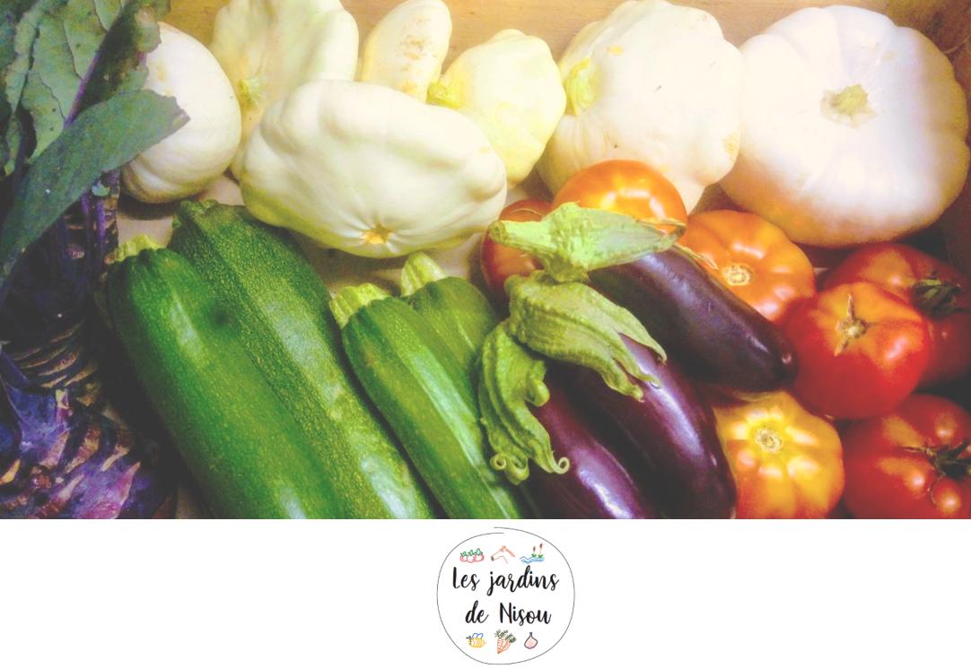 Les Jardins de Nisou : de bons légumes au pied des volcans