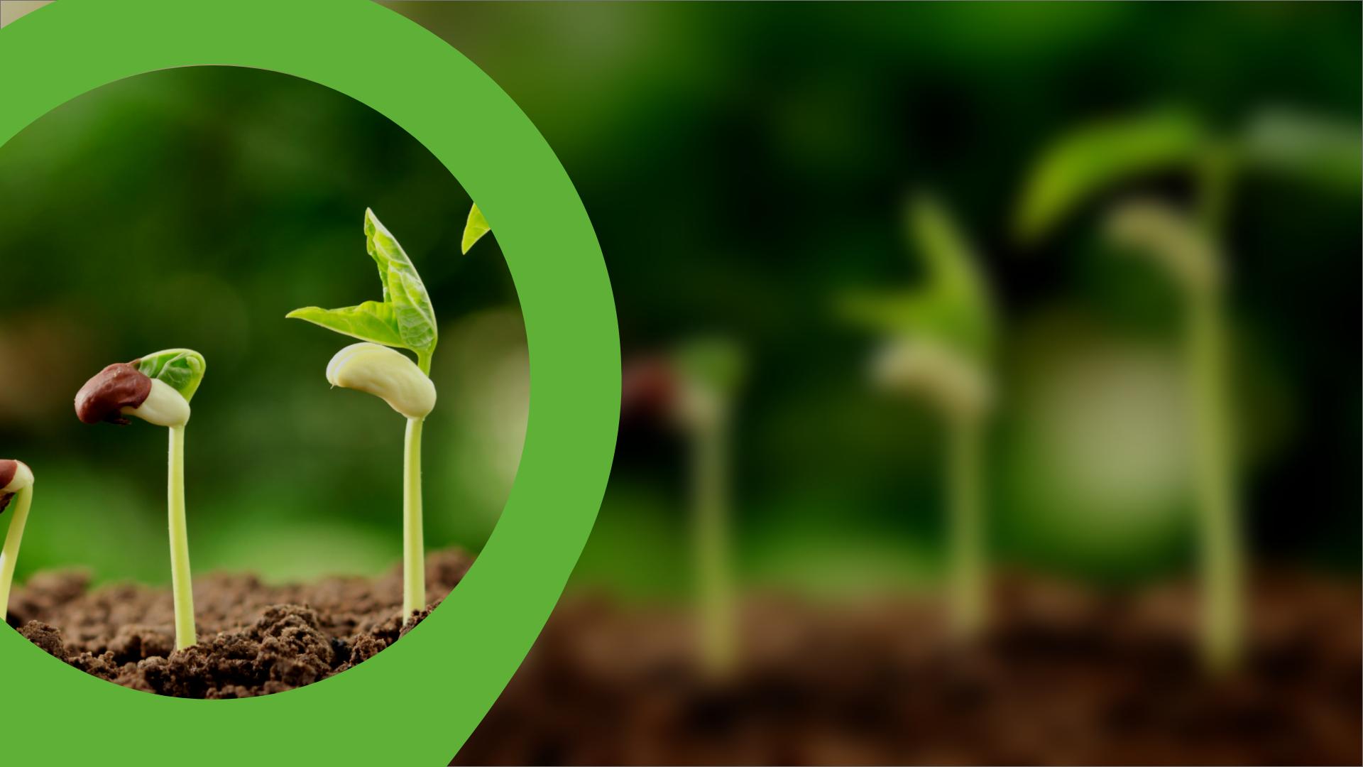 LINKINFARM - La digitalisation au service de la délégation de travaux aux cultures pour accompagner l'agriculteur dans sa transition agro écologique