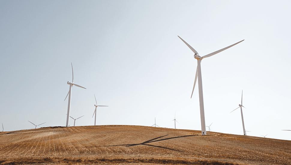 6 enkla sätt att kompensera för ditt klimatutsläpp