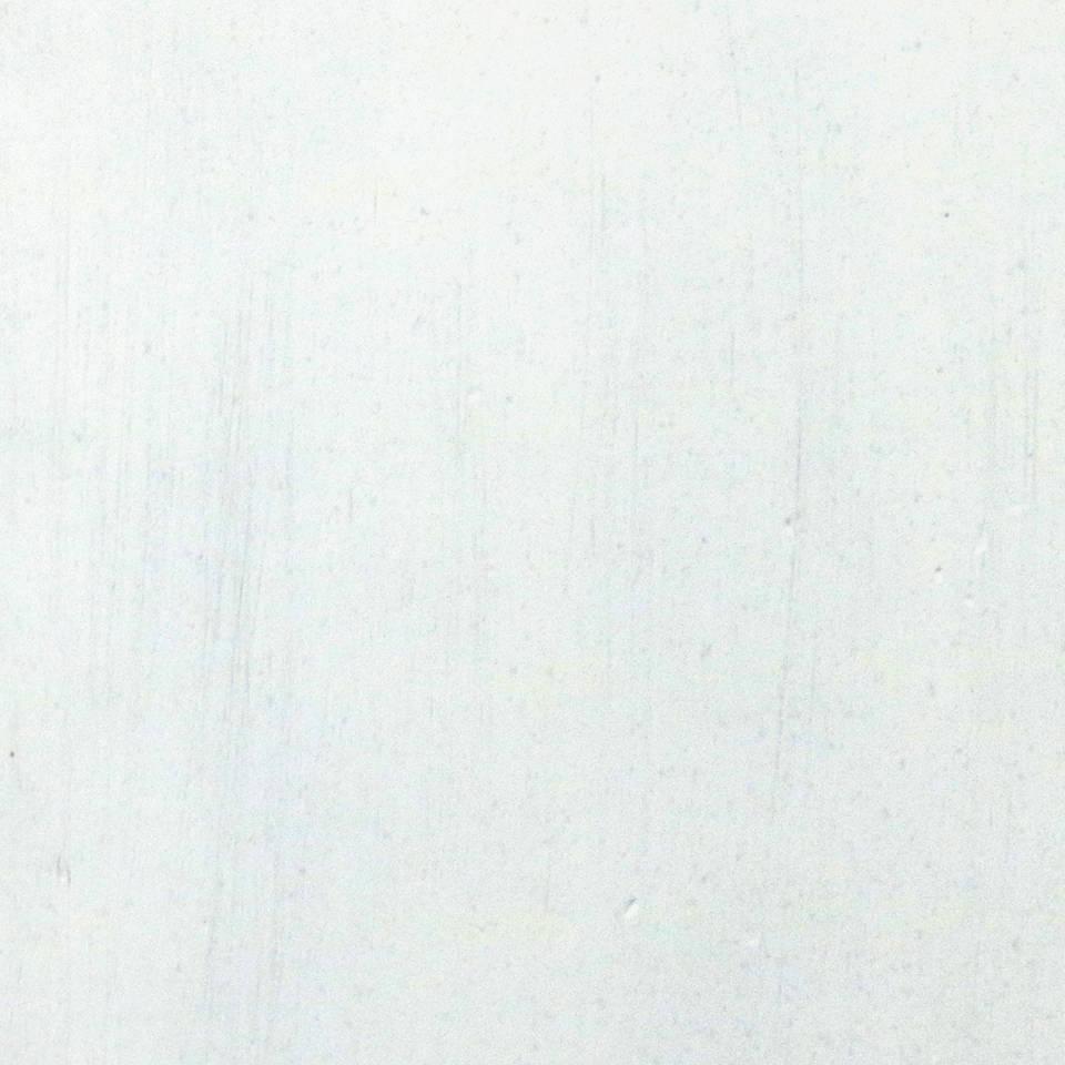 Ant_White