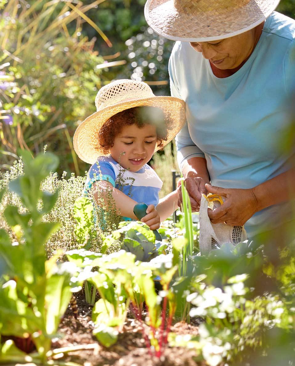 Wearing summer hats while gardening