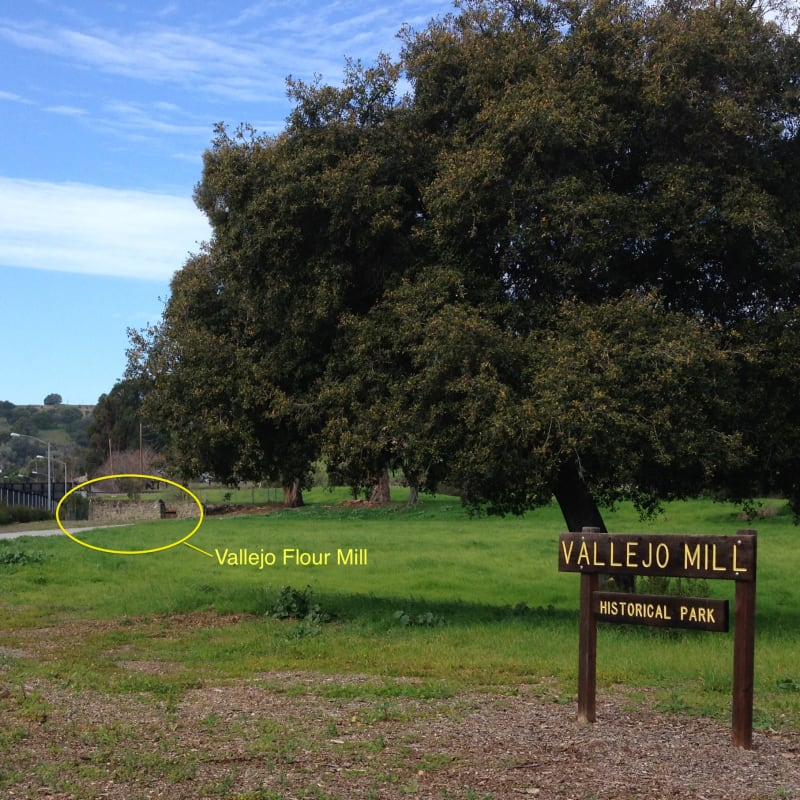 Remnants of the Vallejo Four Mill