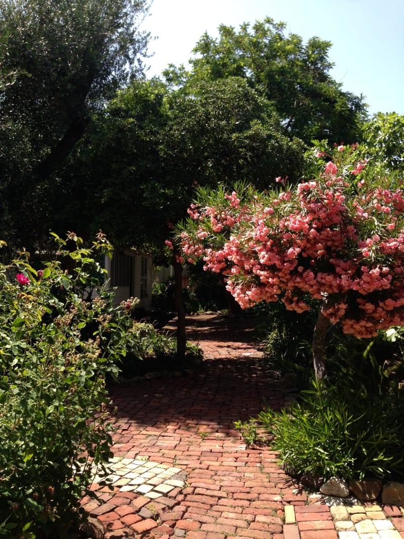 CHL #880 - Fischer-Hanlon House Garden