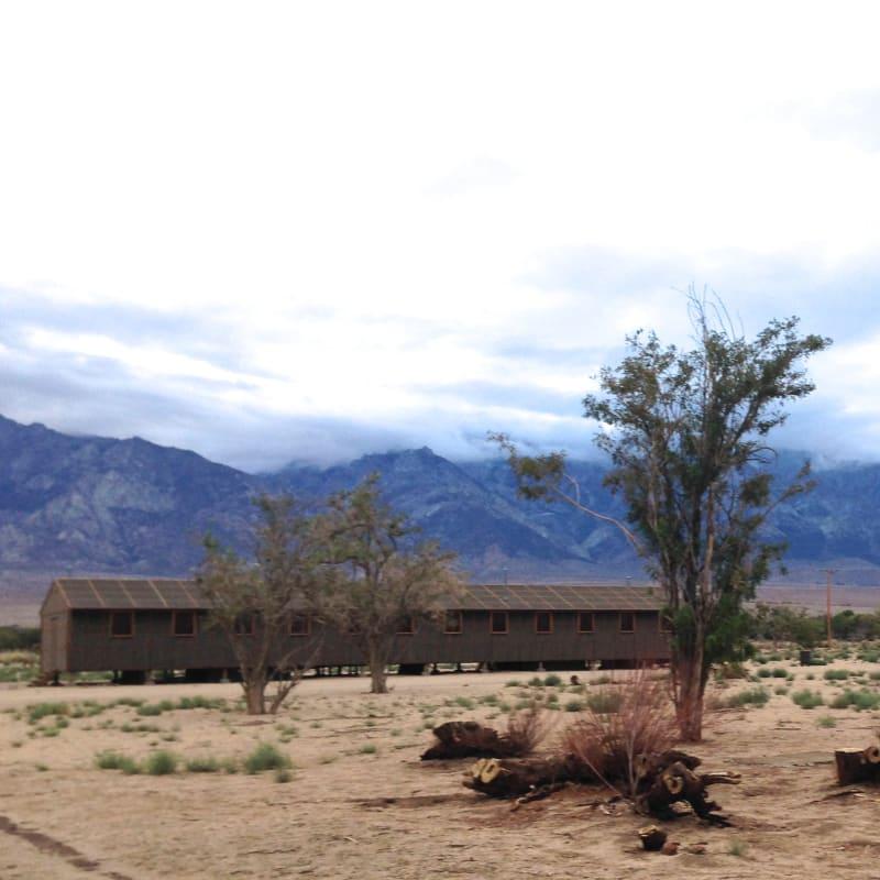 CHL #850  Manzanar Relocation Center - Housing