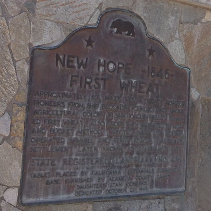 CHL #436 - New Hope State Plaque