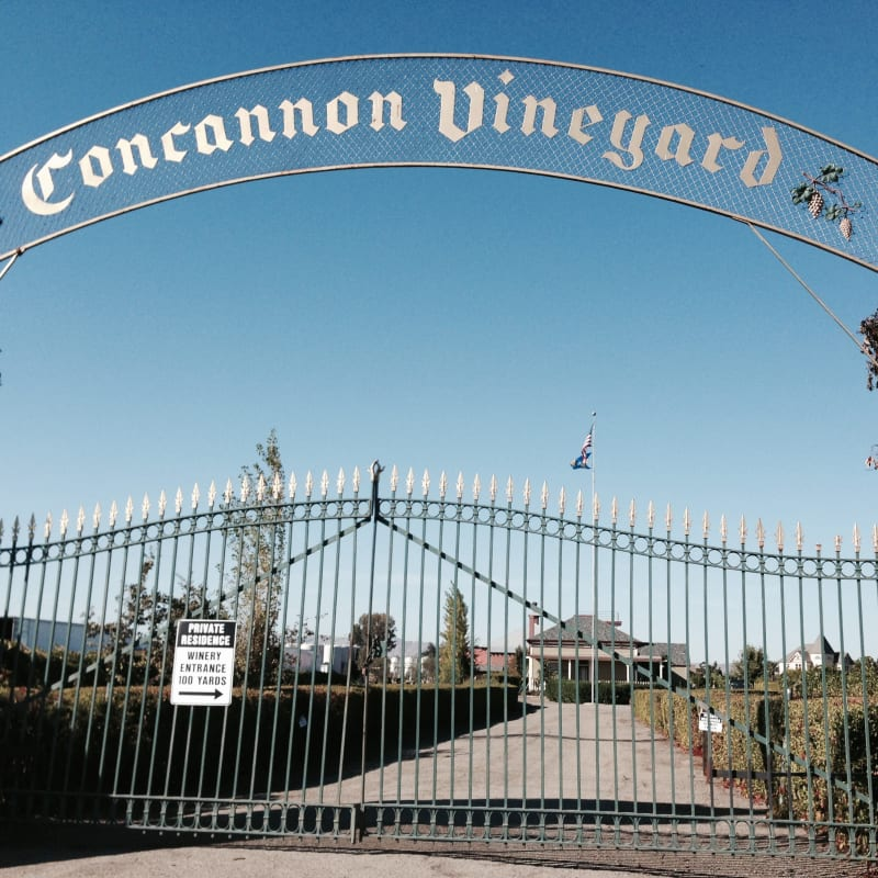 CHL #641 - Concannon Vineyard
