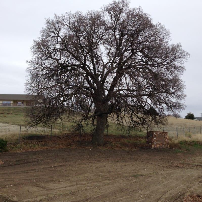 CHL #643 - Tehachapi Old Town