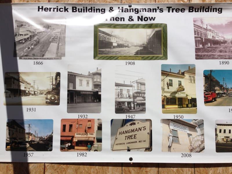 CHL No. 141 Hangman's Tree Display