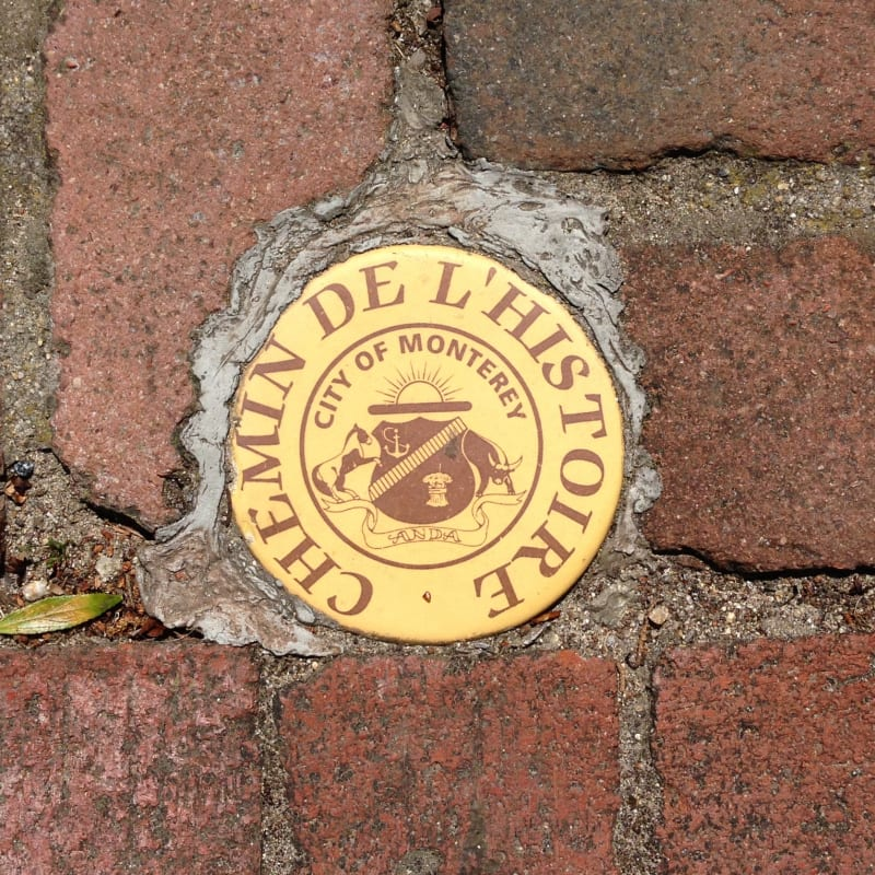 NO. 352 ROBERT LOUIS STEVENSON HOUSE, Sidewalk Medallion
