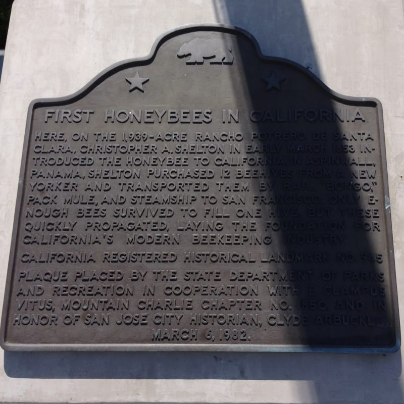 NO. 945 FIRST SUCCESSFUL INTRODUCTION OF THE HONEYBEE TO CALIFORNIA - Plaque