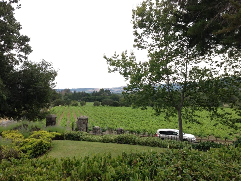 NO. 392-1 SITE OF HARASZTHY VILLA - View from Front Porch