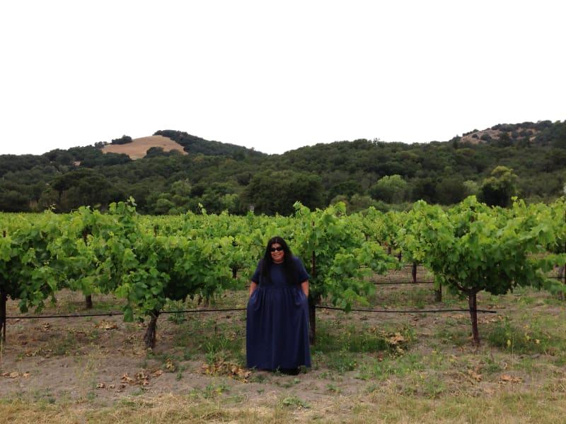NO. 392-1 SITE OF HARASZTHY VILLA - Vineyard
