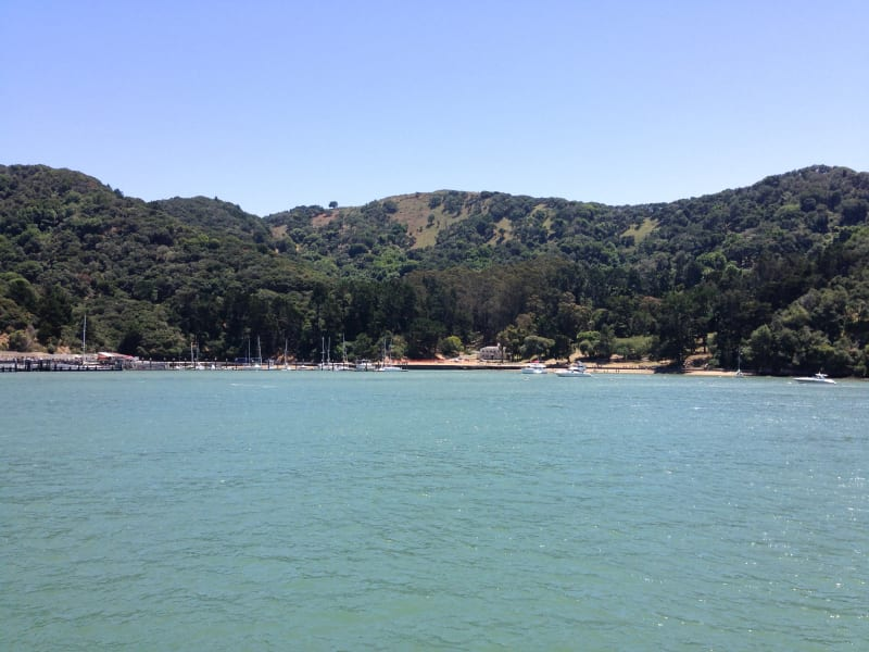 NO. 529 ANGEL ISLAND