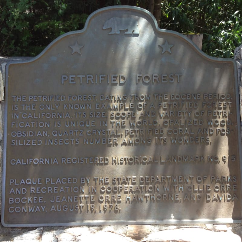 NO. 915 PETRIFIED FOREST - State Plaque