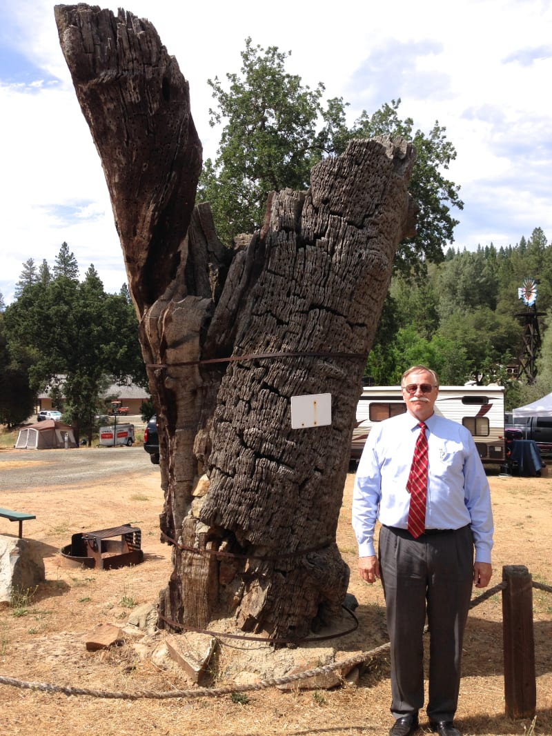 NO. 460 SECOND GARROTE - Hangman's Tree