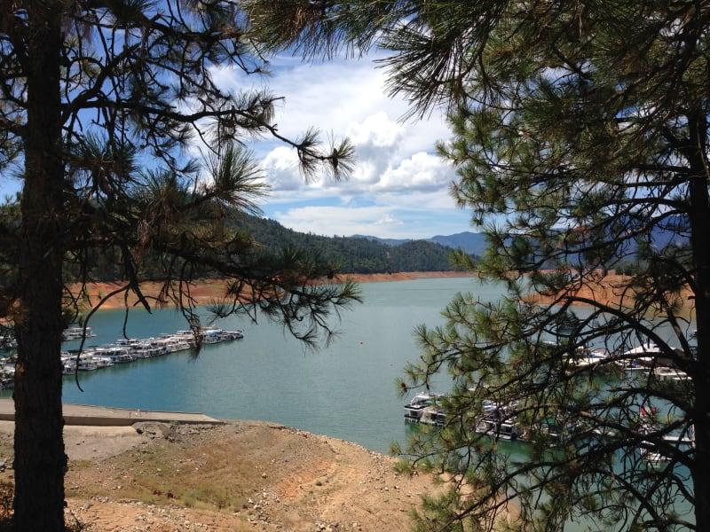 NO. 148 BASS HILL - Shasta Lake