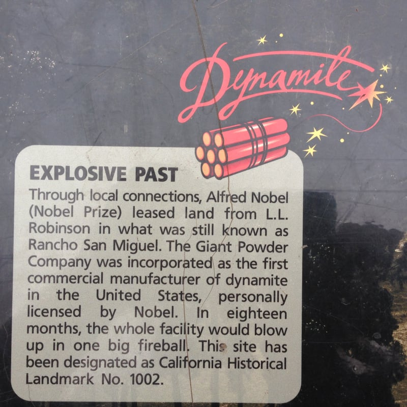 NO. 1002 SITE OF THE FIRST DYNAMITE FACTORY IN UNITED STATES - Dynamite!